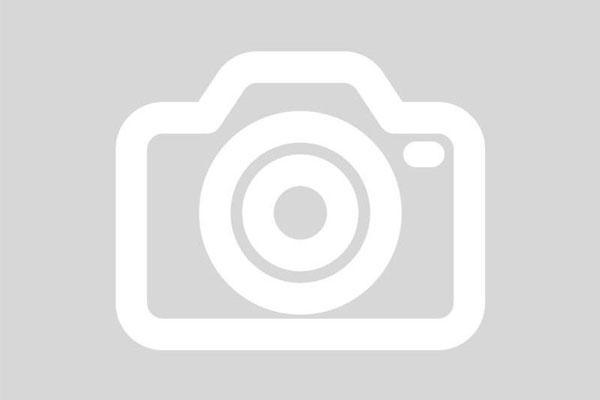 Animal Legislative Update - May 6, 2021